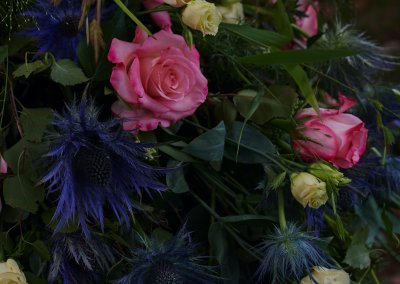 Blaue Disteln Rosa Rosen