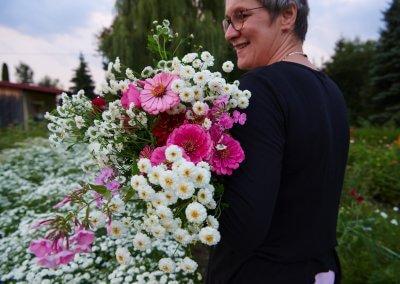Blumen Frisch Geschnitten