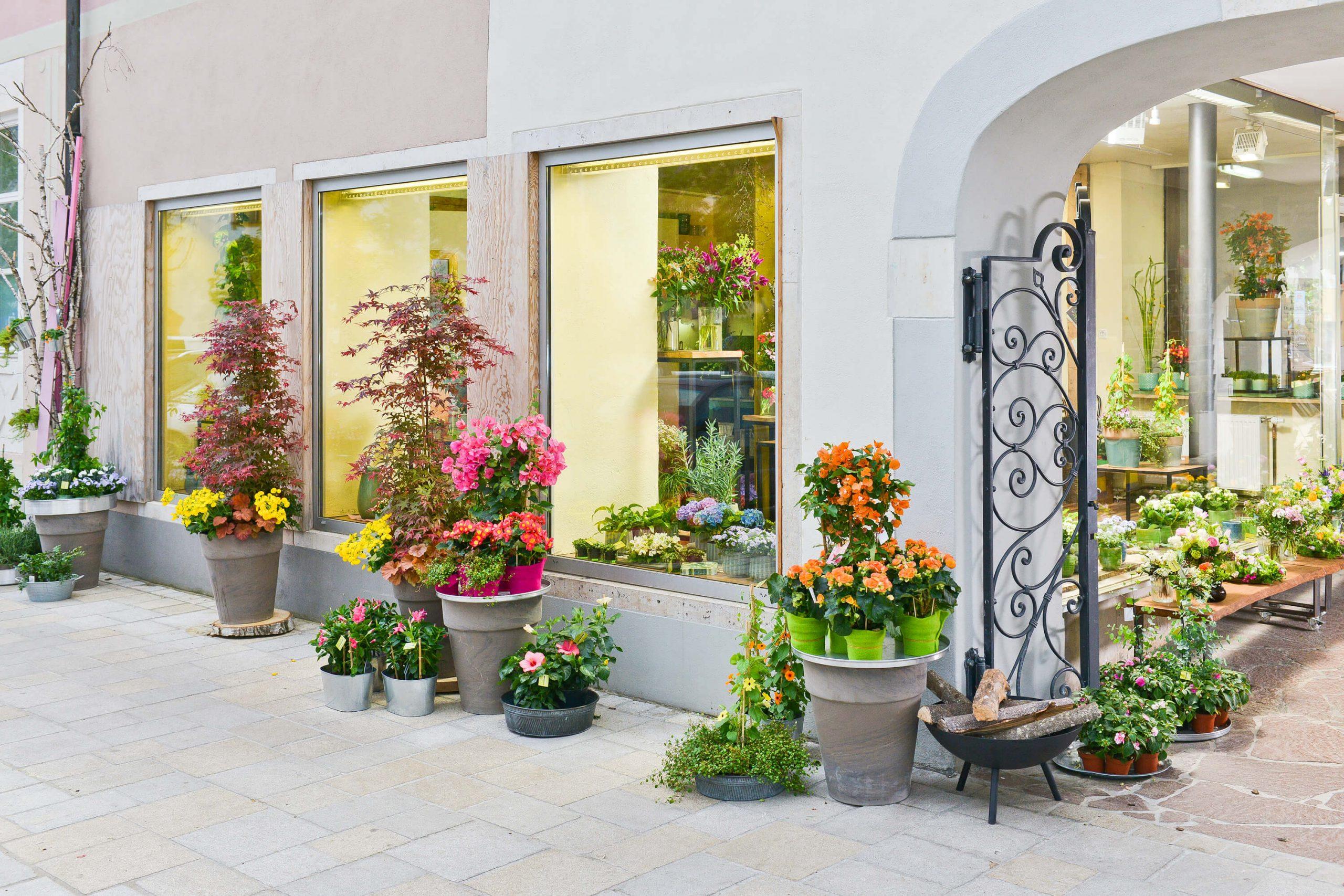 Blumen Hiedl Eingang