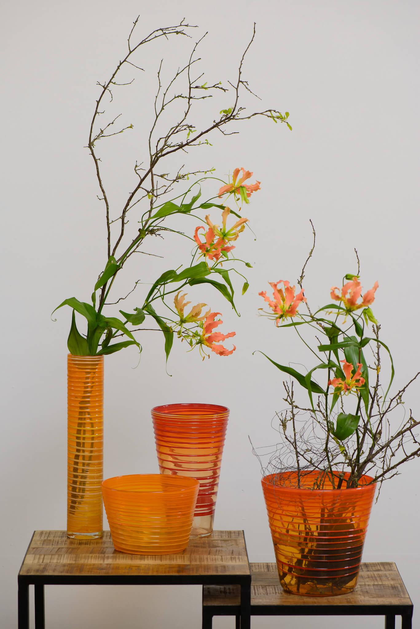Blumenabo Orange