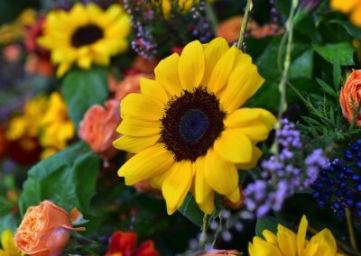 Sonja Sonnenblumen Und Polyrosen