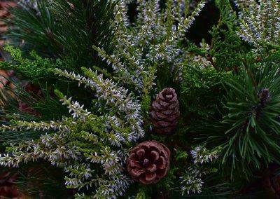 Winterlich mit weißer Calluna und Zapfen